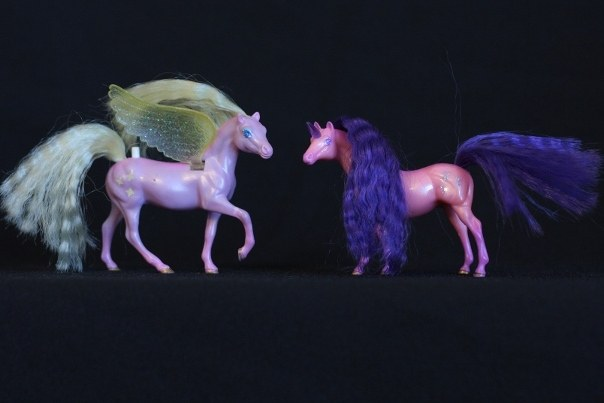 Skye & Daria; <h2>Skye</h2> Body Color: Puplish Pink and Pink<br/>Hair Color: Yellow<br/>Breed: Pegasus Yellow Wings<br/>Symbol: 3 Yellow 4-point Stars<br/>Brush: Dark Blue<br/> Accessories: 2 pink Ribbons with subtle white stripes<br/>Notes: Tail in twisted Braid <h2>Daria</h2>  Body Color: Orangish Pink and Purple<br/>Hair Color: Dark Purple <br/>Breed: Unicorn Purple Horn <br/>Symbol: 3 Fleur-de-lis (I think, they might be crowns, but its hard to tell)<br/>Accessories: 2 Hot Pink Ribbons<br/>Notes: Tail Braided <br/> Trading Card Story: Skye is a fun-loving Pegasus, who always has her head in the clouds. She delights in flying through sparkling summer sun showers. Her best friend Daria, rolls on the ground laughing at her friend who always has a dripping wet mane and tail. Daria loves to play hide and seek. But she likes to be easily found!